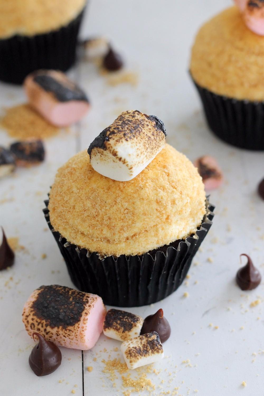 online shop s'mores cupcake