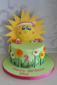 Nature and sun cake