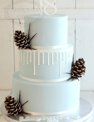 Icy blue drip cake with pinecones