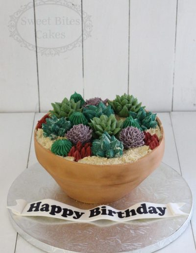 3D succulents pot cake