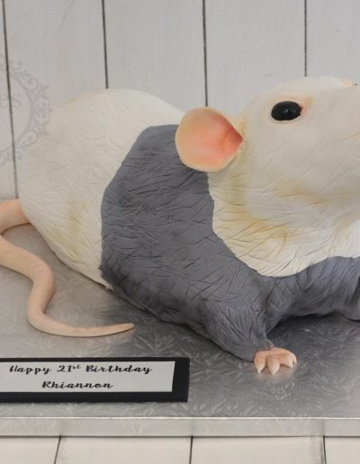 3D rat cake