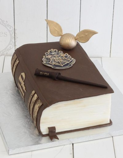 3D Harry Potter book cake
