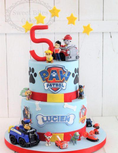 2 tier paw patrol cake