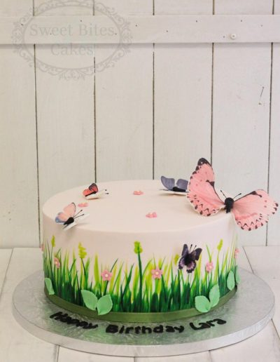 Painted grass and butterfly cake