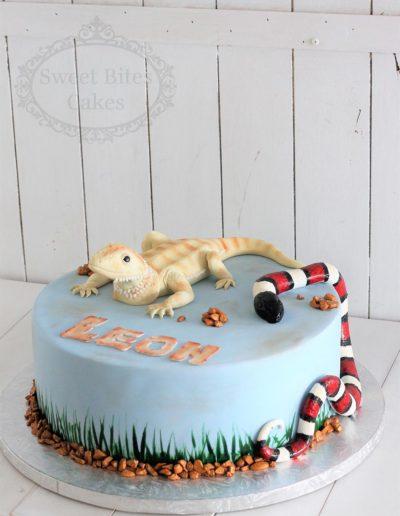 Lizard and snake cake
