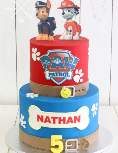 paw patrol cake 5th birthday