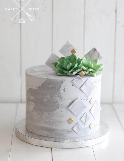 succulent concrete industrial geometric cake