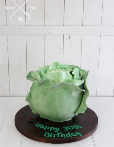 3d cabbage lettuce cake garden vegetable