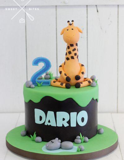 saharan hippo giraffe rainforest cake 2nd birthday