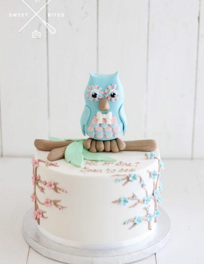 gender reveal baby shower cake own