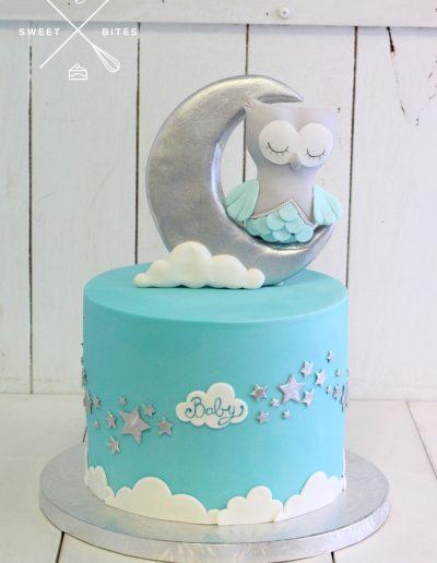 baby shower boy moon owl cake