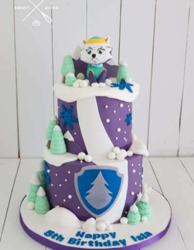 everest paw patrol cake mountain 5th birthday
